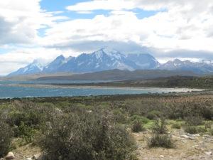 Paisagem no caminho de Punta Arenas até o parque