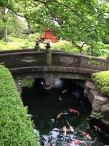 Laguinho com carpas no Senso-ji